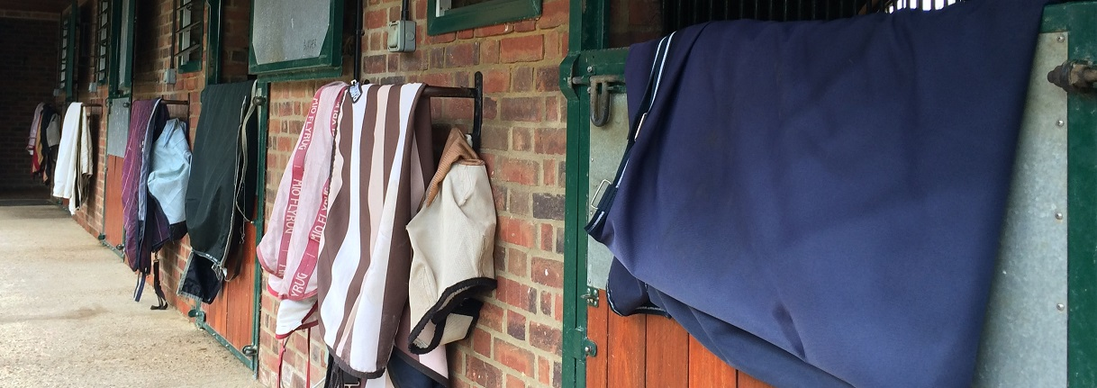 Horse rug washing and waterproofing, West Sussex, Hampshire - Rug Angels